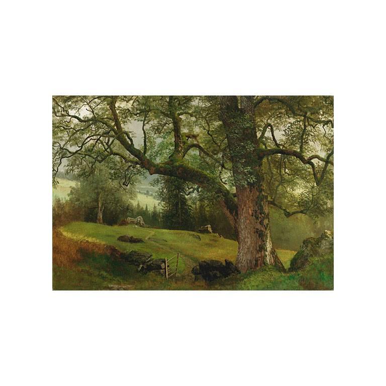 Albert Bierstadt Landscape Painting - A Trail through the Trees