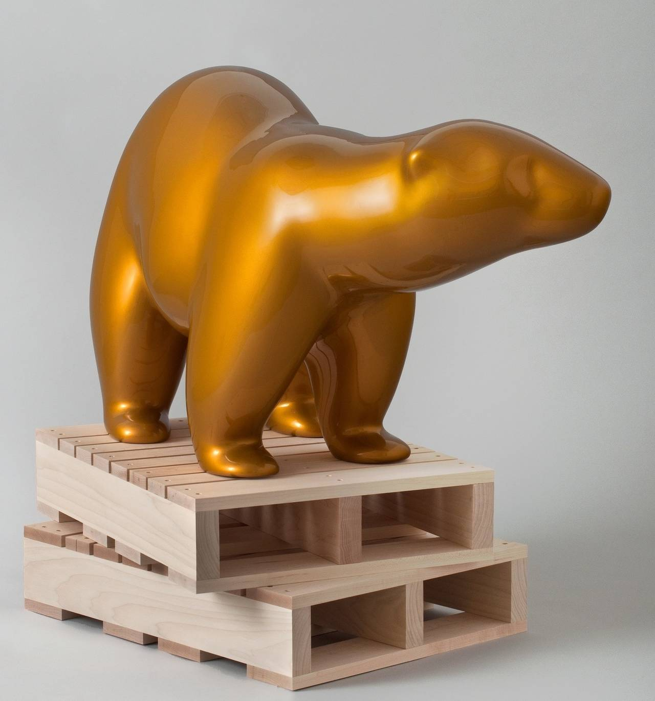 Gold bear, against the tide