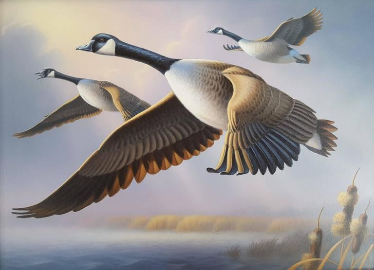 Ron Louque Animal Painting - Canada Geese