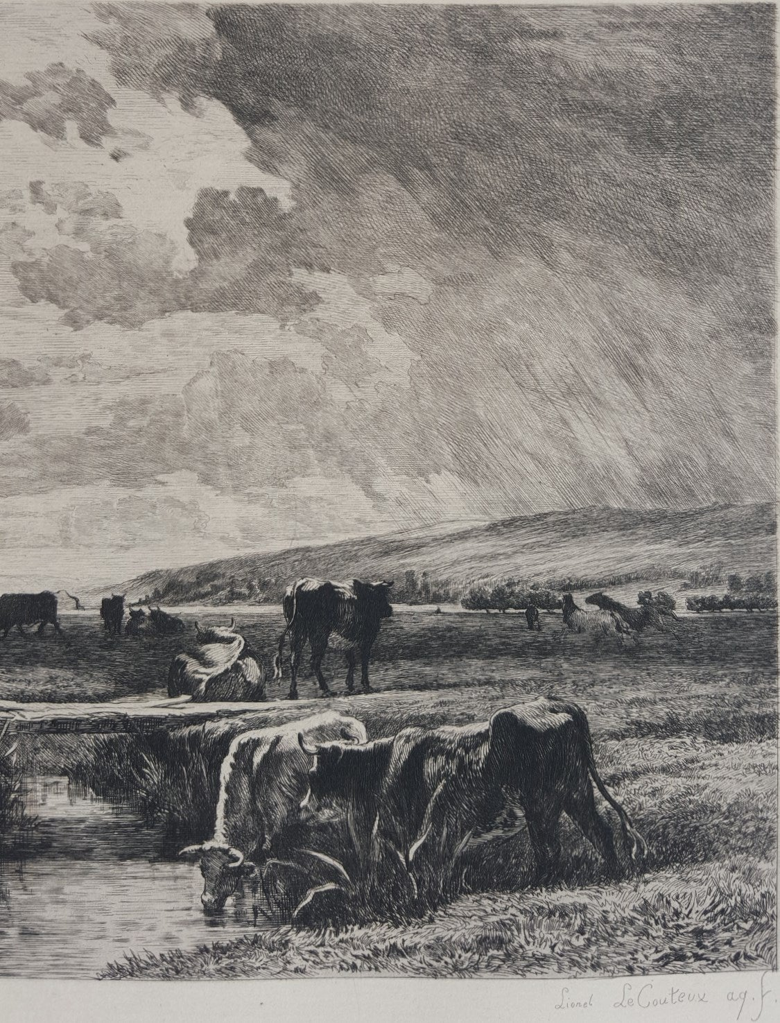 Valle de la Touque Normandie, Sevres - Gray Animal Print by Constant Troyon