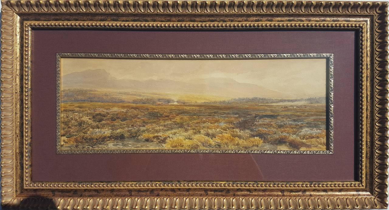 Extensive Moorland Landscape 2
