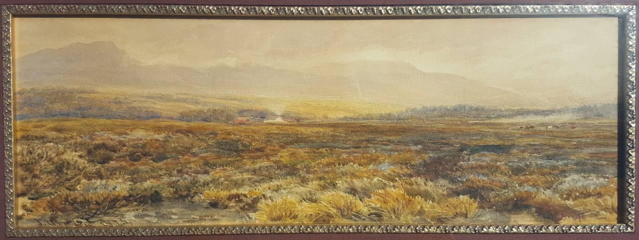 Extensive Moorland Landscape 3