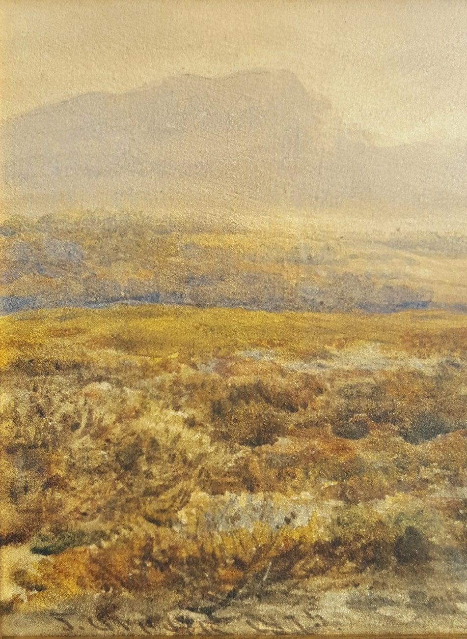Extensive Moorland Landscape 4