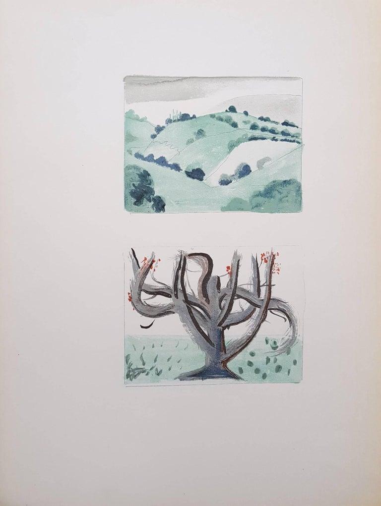 Au Jardin d'Allah (Set of Two) - Gray Landscape Print by André Derain