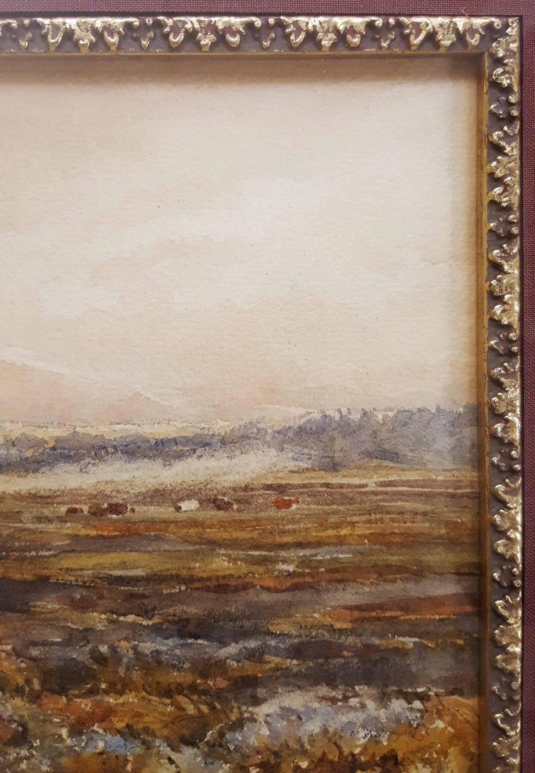 Extensive Moorland Landscape 8