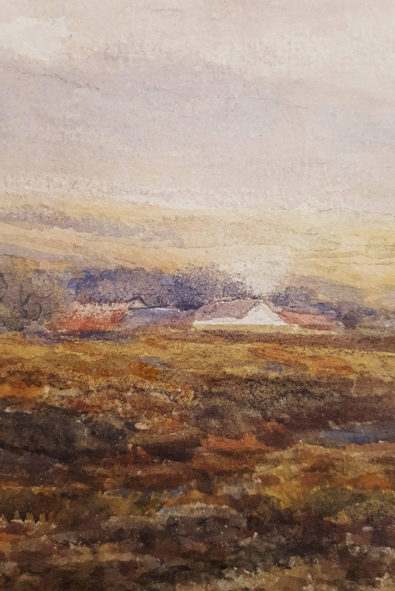 Extensive Moorland Landscape 9