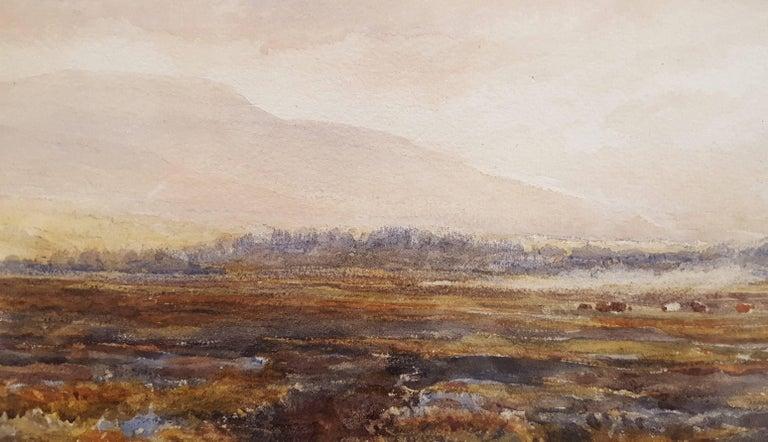 Extensive Moorland Landscape 10