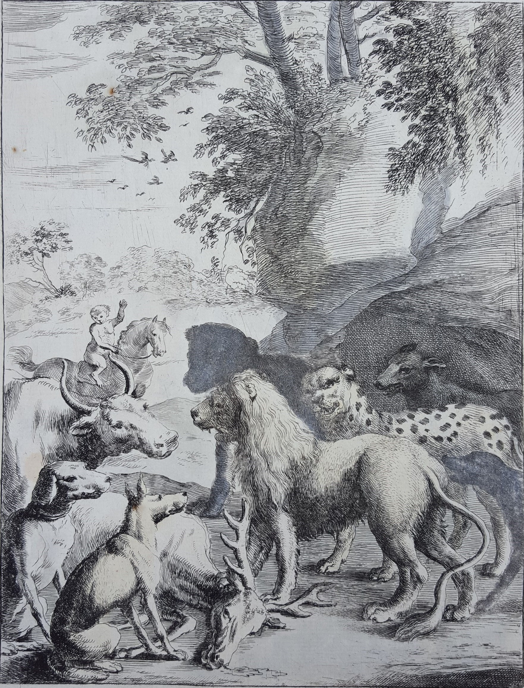 The Lion as King of the Beasts