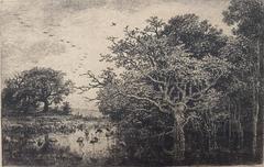 Le Marais (Aux Cigones)