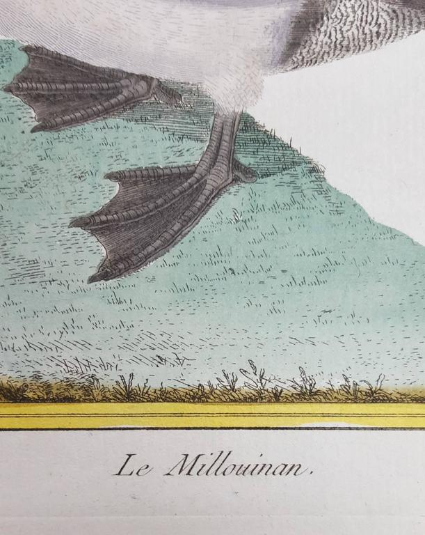 Le Millouinan - Realist Print by Francois Nicolas Martinet