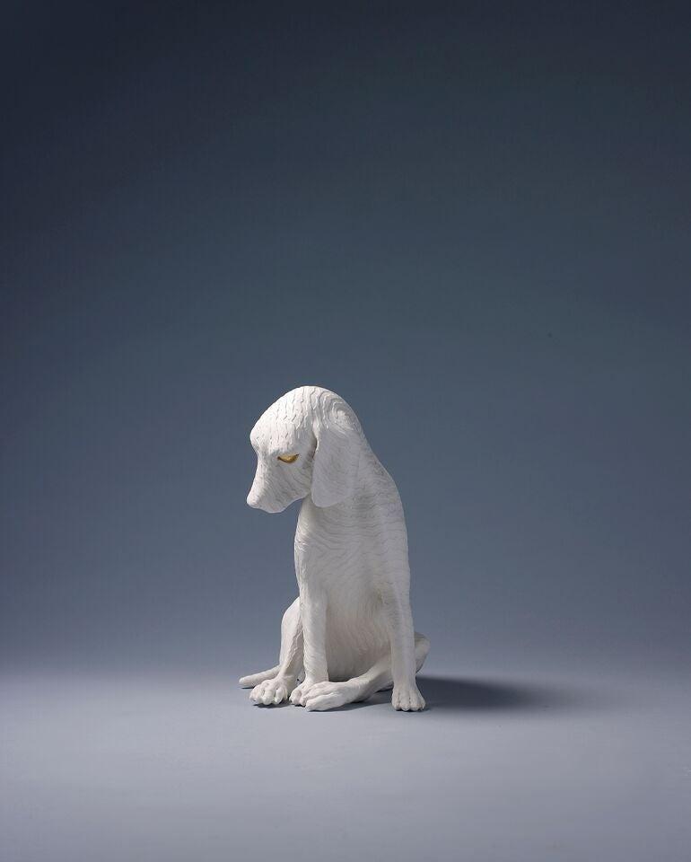 The Imperceptible-Dog