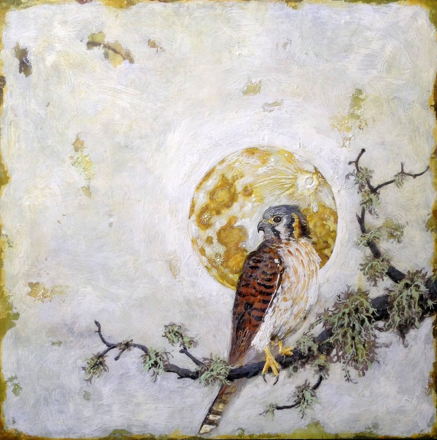 Chris Reilly - American Kestrel For Sale at 1stdibs