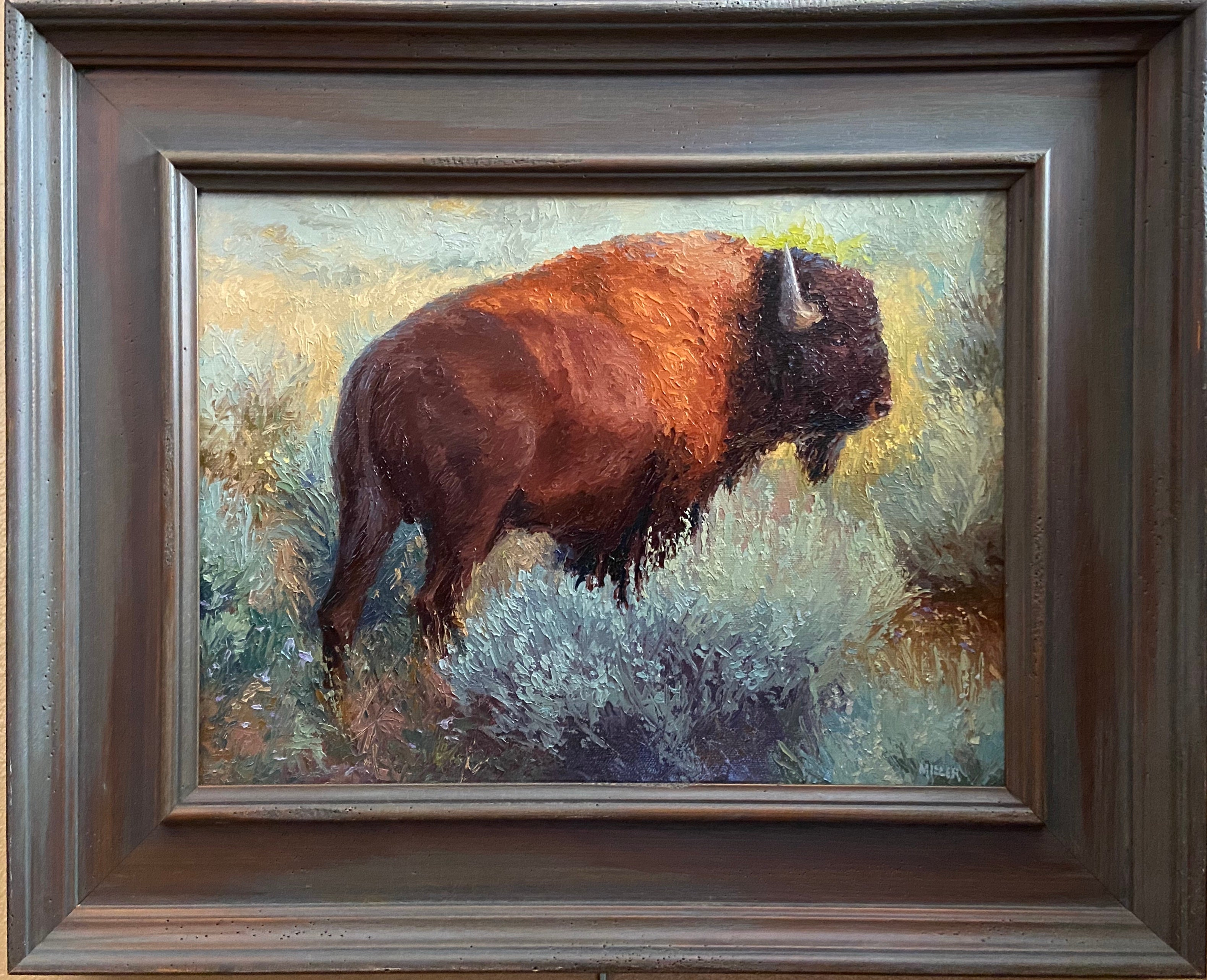 The Boss (American Bison)
