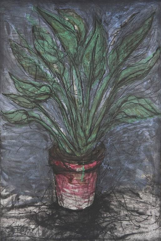 A Well Painted Strelizia, - Print by Jim Dine