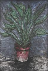 Jim Dine - A Well Painted Strelizia,