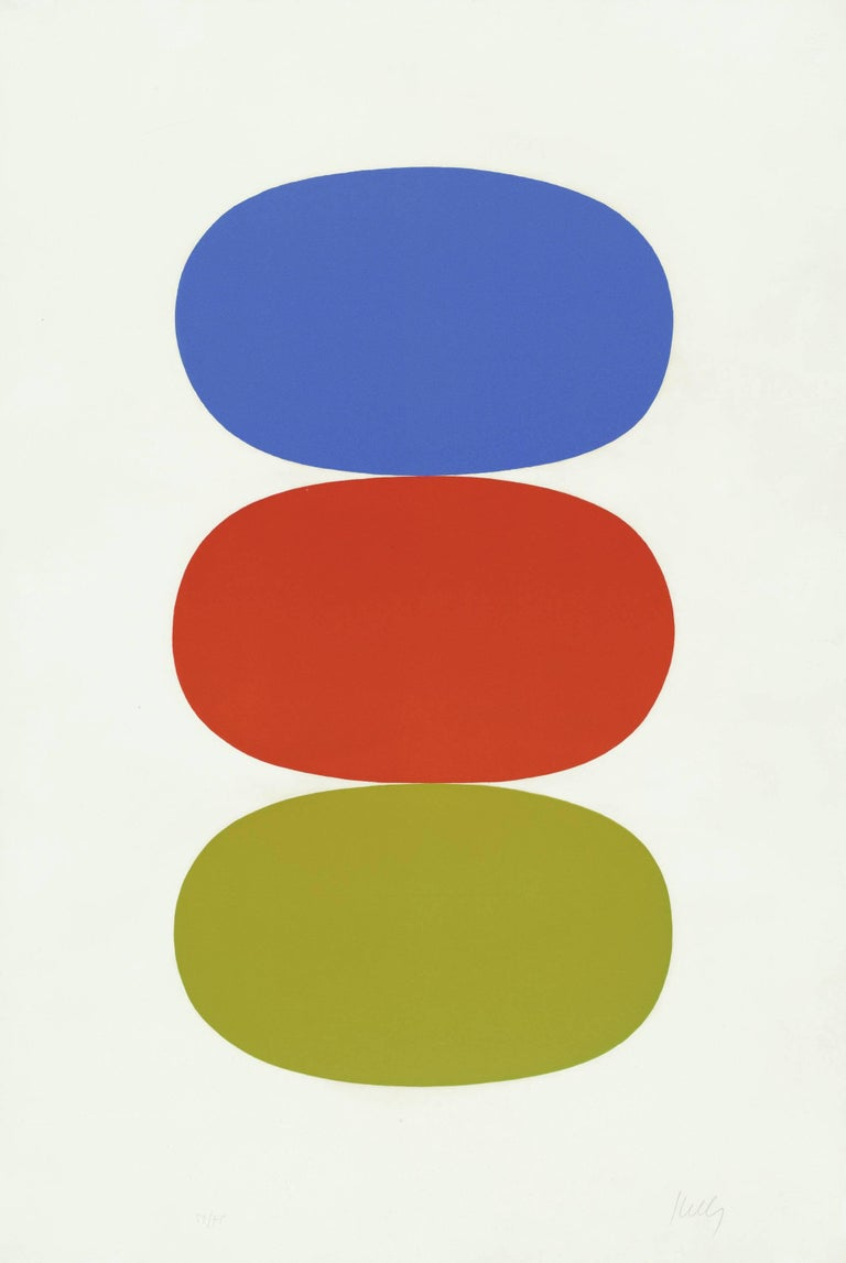 Ellsworth Kelly Print - Blue and Orange and Green