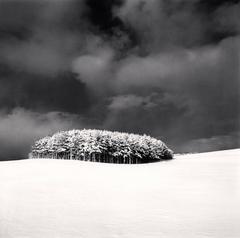 White Copse, Study 3, Wakkanai, Hokkaido, Japan. 2004