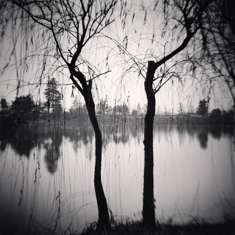 Michael Kenna Black and White Photograph - Afternoon Trees, Shexian, Anhui, China. 2008