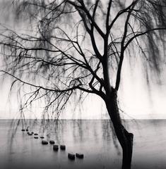 Erhai Lake, Study 3, Dali, Yunnan, China. 2013
