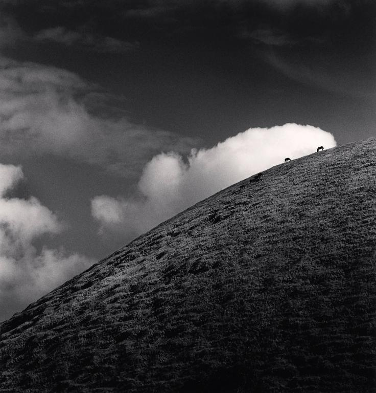 Michael Kenna Black and White Photograph - Seven Horses, Iti Maunga, Easter Island. 2001