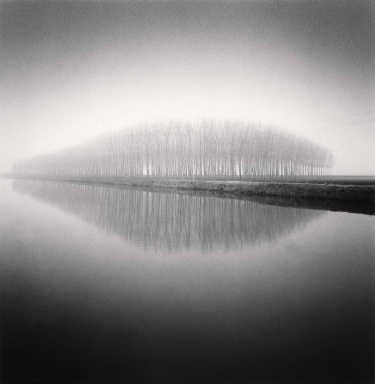 Michael Kenna Landscape Photograph - Copse Reflection, Vendramin, Veneto, Italy