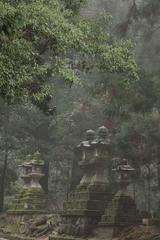 Toward Kasuga Shrine, Along Pathways of Lanterns