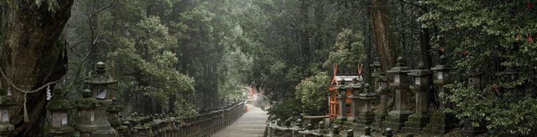 Toward Kasuga Shrine, Along Pathways of Lantern