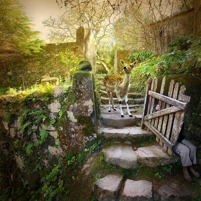 Tom Chambers Color Photograph - Garden Gate