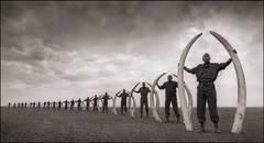 Line of Rangers Holding Tusks of Killed Elephants
