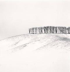 Hilltop Trees, Study 4, Teshikaga, Hokkaido, Japan
