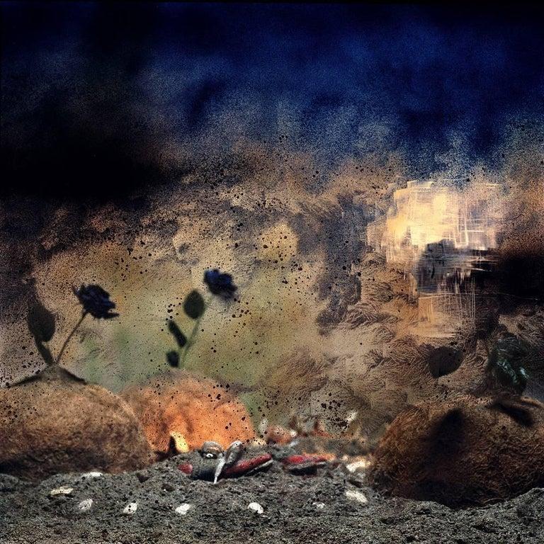 Carlos Tarrats Still-Life Photograph - Untitled 16