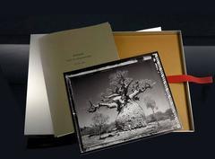 Elaine Ling,  BAOBAB: Tree of Generations – photo-eye EDITIONS portfolio