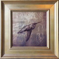 Humming Bird Flying