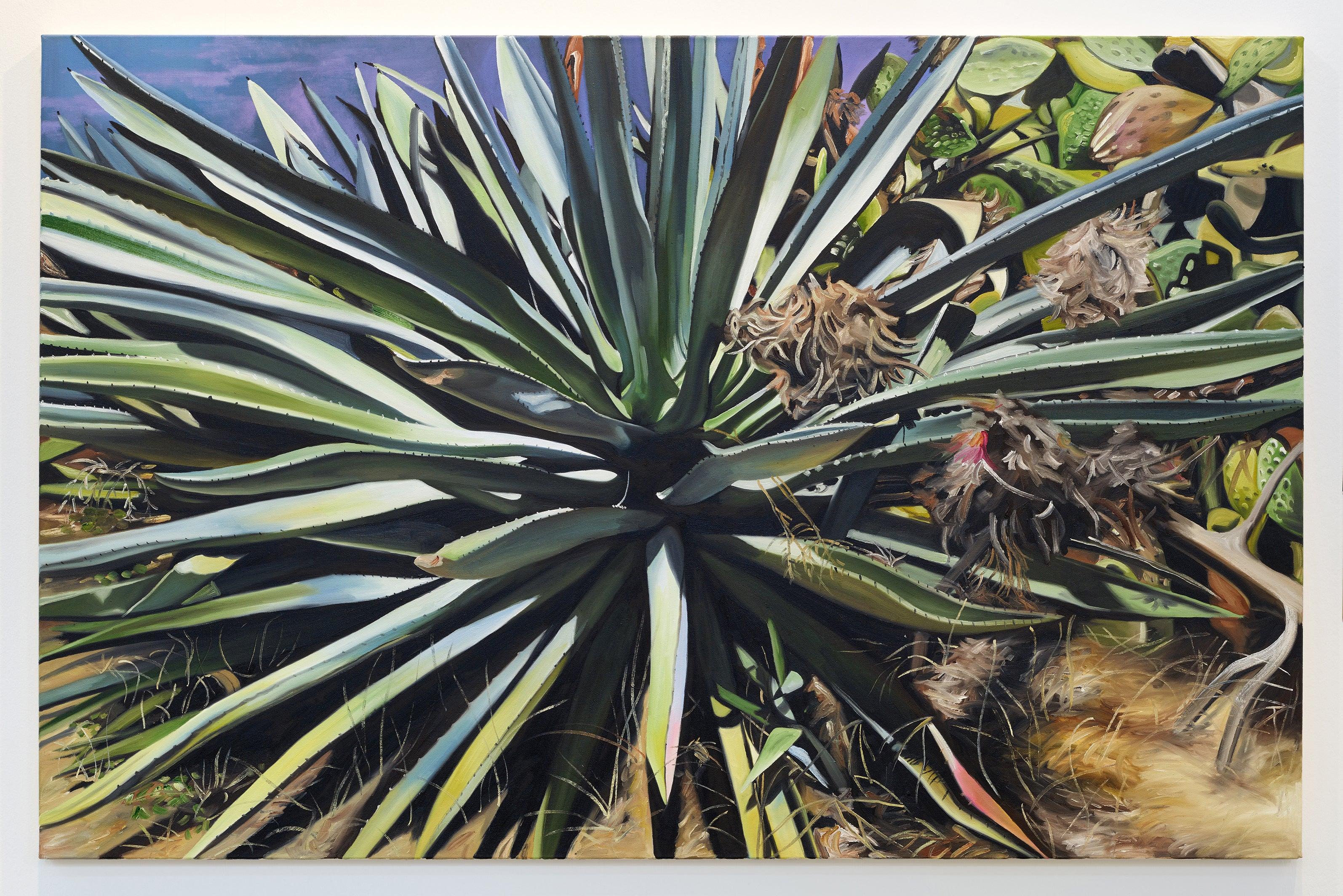 orom id atset (2) / figuration, agave, green, blue, photorealism, landscape