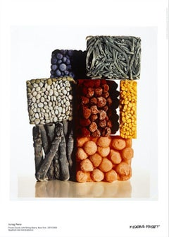 """""""Frozen Foods with String Beans"""" still life photography museum poster 27 x 19 in"""