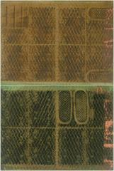 Untitled (Two Panel)