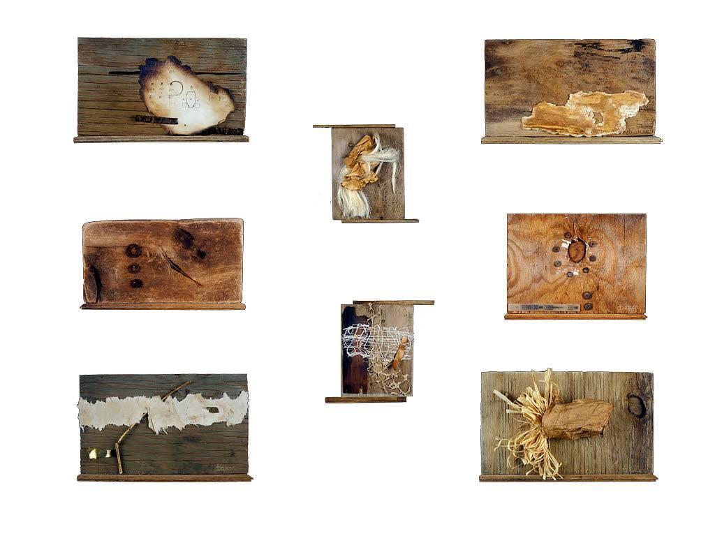 Wood equals paper