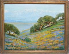 California Wild Flower Landscape