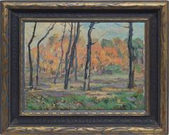Fall Forest View