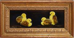 Realist Portrait of Chicks