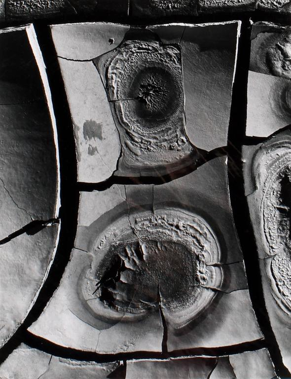 Brett Weston - Cracked Paint 1