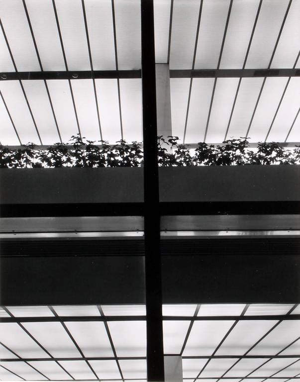 Brett Weston - Manufacturer's Trust Bank 1