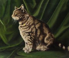 Portrait of a Striped Cat
