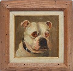 19th Century American School Portrait of a Dog