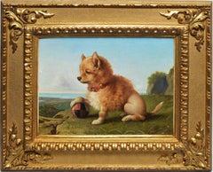 Portrait of a Pomeranian Dog by Giovanni Costa