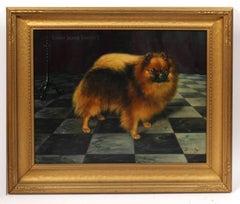 Champion Dog Portrait