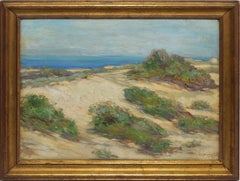 American School View of New England Beach Dunes