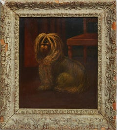 American School, Portrait of a Shaggy Dog