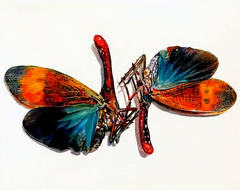 Dual Moths