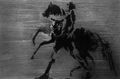 Black Horse 005